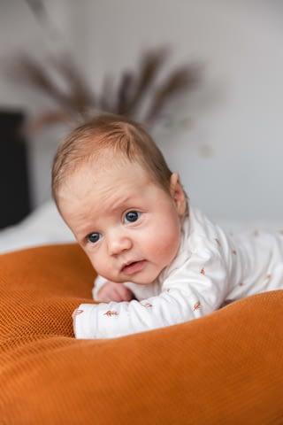 Newborn-lifestyle-fotografie-Alkmaar